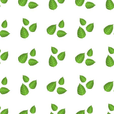 Seamless pattern with decorative green raspberry leaves on white background. Vector illustration for any design. Illustration