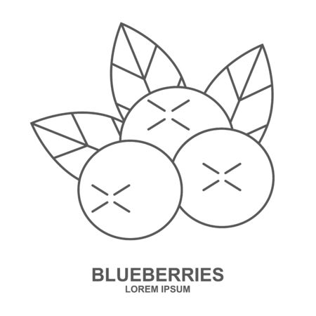 Blueberry flat line icon, forest berry sign, healthy food   isolated on white background. Summer fruits for healthy lifestyle. Organic fruit. Vector illustration for any design.