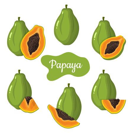 Set of fresh whole, half, cut slice papaya fruits isolated on white background. Summer fruits for healthy lifestyle. Organic fruit. Cartoon style. Vector illustration for any design. Illustration