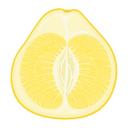 Fresh bright exotic half yellow pomelo fruit isolated on white background. Summer fruits for healthy lifestyle. Organic fruit. Cartoon style. Vector illustration for any design.