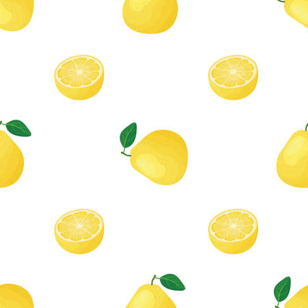 Seamless pattern with fresh bright exotic whole and cut slice pomelo fruit on white background. Summer fruits for healthy lifestyle. Organic fruit. Cartoon style. Illustration