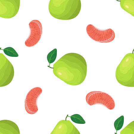 Seamless pattern with fresh bright exotic whole and piece pomelo fruit on white background. Summer fruits for healthy lifestyle. Organic fruit. Cartoon style. Vector illustration for any design. Illustration