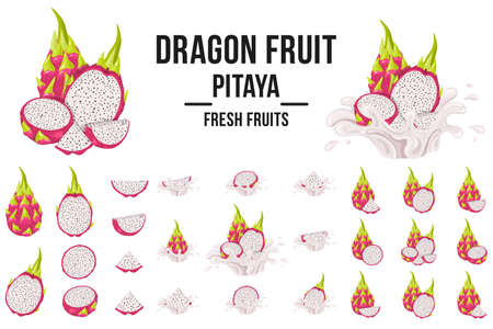 Set of fresh whole, half, cut slice red pitaya fruits isolated on white background. Summer fruits for healthy lifestyle. Organic fruit. Cartoon style. Vector illustration for any design