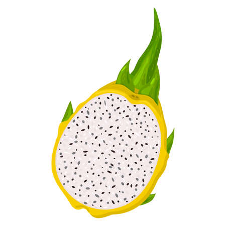 Fresh half cut yellow pitaya fruits isolated on white background. Summer fruits for healthy lifestyle. Organic fruit. Cartoon style. Vector illustration for any design Vettoriali