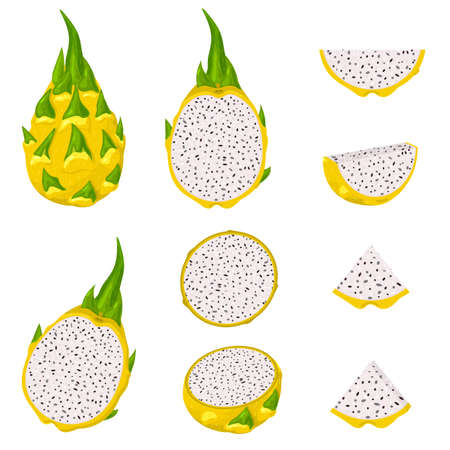 Set of fresh whole, half, cut slice yellow pitaya fruits isolated on white background. Summer fruits for healthy lifestyle. Cartoon style. Vector illustration for any design