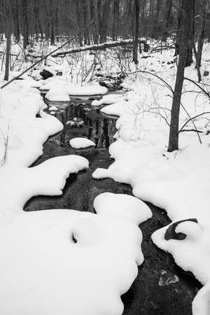 A stream runs through a snow covered wood. Foto de archivo