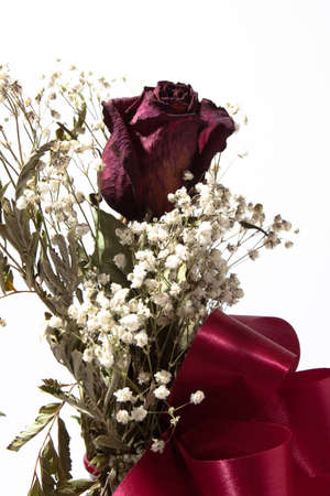 A single, dried rose arranged with baby's breath with a red ribbon on a white background.