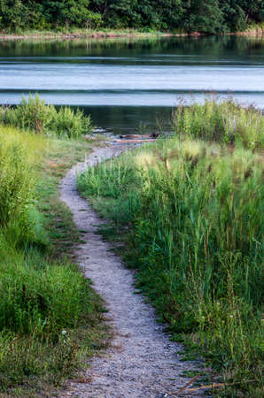 A path leads to a tidal lake through sea grasses.