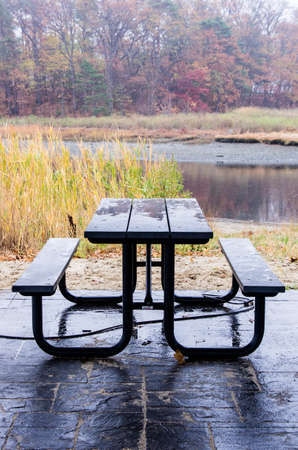 A picnic table at a recreation area next to tidal marshes.