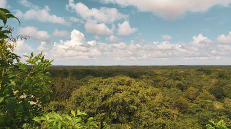 Jungle landscape at ruins of the ancient city in Uxmal Stok Fotoğraf - 128393147