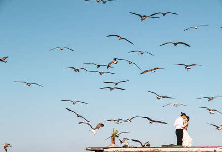 Lovely couple hugging on the roof with seagull background at Bosphorus