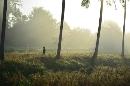 wean: Morning life of the first light
