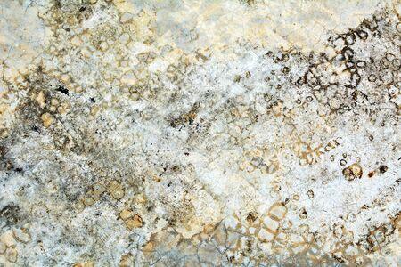 Vecchio muro sfondo per texture