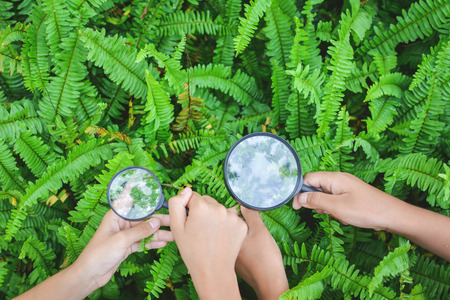 Close up hands holding magnifying glass in garden color of hipster tone selective soft focus, concept natural explorer
