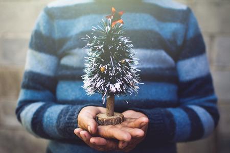 Mão feminina velha segurando mini pinheiro, Feliz Natal e conceito de Feliz Ano Novo, foco seletivo e suave