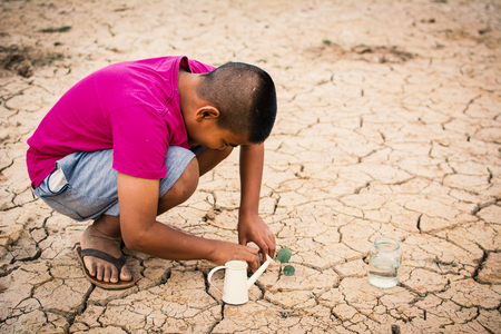 Boy planting little green tree on crack dry ground, concept drought and world environment day