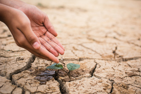 男孩手澆水的裂縫乾燥地面,概念乾旱的小綠色植物,拯救世界
