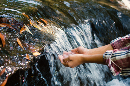 Close up hands of girl drinking water from waterfall stream on forest