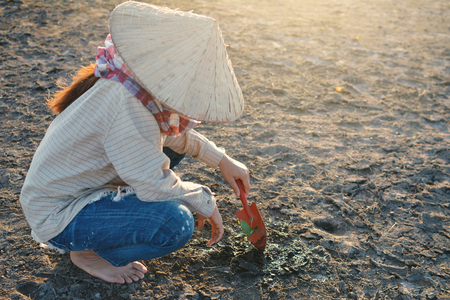 Asian woman and little green plant on cracked dry ground, concept drought  crisis environment save the world,selective and soft focus Stock Photo