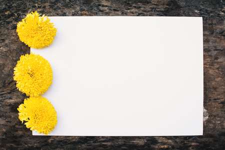 Fresh marigold and empty paper on wood background Reklamní fotografie