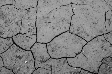 crack dry background, concept drought