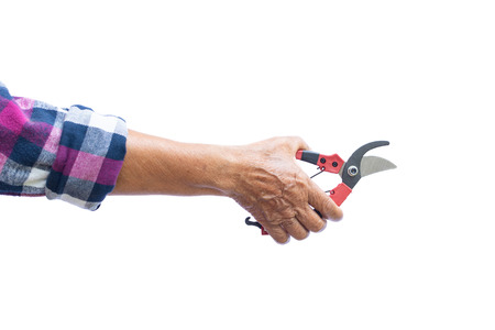 Old gardener holding  tools on a white background