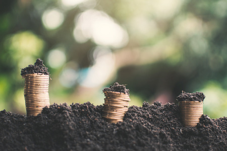 Coins growing on soil background,Economic growth concept.