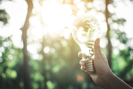 Human holding light bulb in nature selective soft focus, concept protect the environment