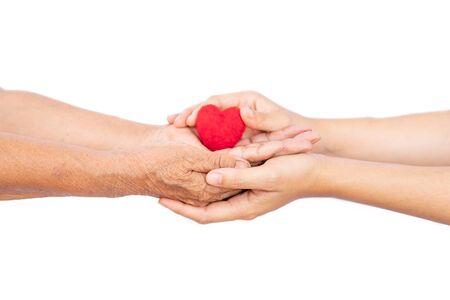 female hand holding mini heart , take care the health concept.