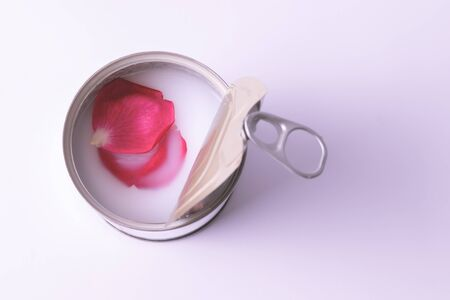 Rose petals floating in milk in open canned food on white isolated background. Old style. Top view.