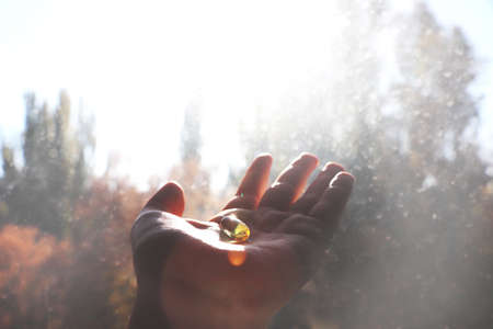 Vitamin D or omega 3 capsules. Vitamin gel in hand against the window. The concept of a lack of vitamin D in the body Stockfoto