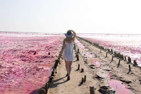 View of the pink Lemur Lake on the Arabat Spit in Ukraine. Unique pond with Dunaliella Salina algae, salt crystals and healing mud. Dead Sea analogue Фото со стока