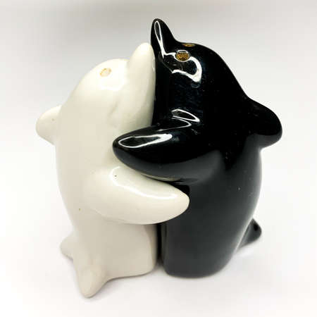 Black and white yin yang dolphin shaped salt and pepper shakers hugging each other on white background Banque d'images