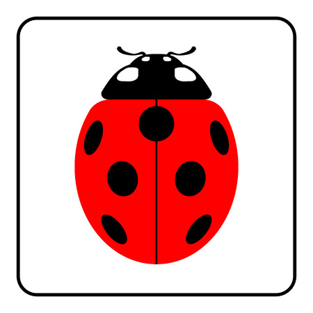 lady fly: Ladybug sign in the frame. Beautiful red ladybird icon isolated on white background. Bright cute spotted insect cartoon. Design beetle. Use for print production, etc. Colorful Vector illustration