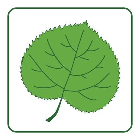 linden: Green leaf silhouette icon. Concept Save the Planet. Care of Earth. Ecology flat design element. Eco green symbol of linden leaf isolated on white background. Organic nature Bio. Vector illustration Illustration