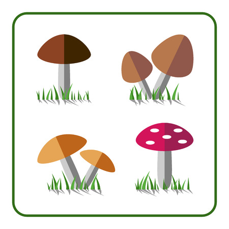 edible: Mushroom icons set. Nature collection. Trendy beautiful set of flat elements, isolated on white background. Include grass, edible and inedible mushrooms. Sprites for the game Stock vector illustration
