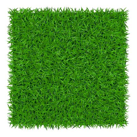 Fondo de la hierba verde. cubo césped. Resumen de textura de campo. Símbolo del verano, planta, ecológica y natural, crecimiento o fresco. Diseño para la tarjeta, bandera. plantilla prado de productos de impresión. Ilustración del vector Ilustración de vector