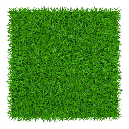 Green grass background. Lawn nature. Abstract field texture. Symbol of summer, plant, eco and natural, growth or fresh. Design for card, banner. Meadow template for print products. Vector Illustration Vettoriali