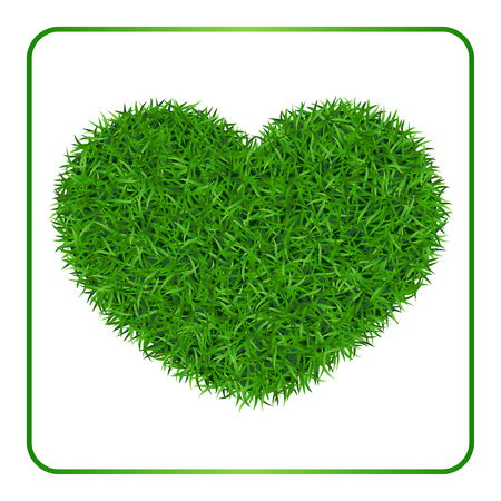 grass isolated: Heart green grass background. Field template, isolated on white baclground. Plant texture. Valentines day design for card, banner, print etc. Meadow symbol of love, nature, happy. Vector Illustration.