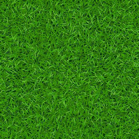 Grünes Gras nahtlose Muster. Hintergrund Rasen Natur. Abstrakte Feldbeschaffenheit. Symbol des Sommers, Pflanze, Eco und natürliche Wachstum. Wiese Design für Karte, Tapete, Verpackung, Textil-Vektor-Illustration Vektorgrafik