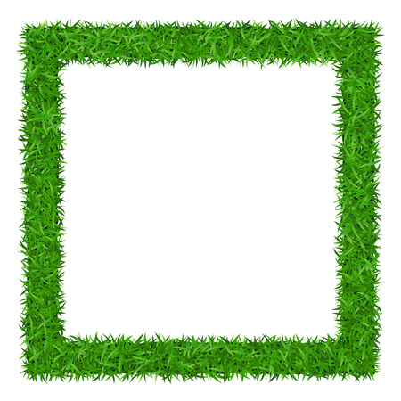 copyspace: Green grass frame with copy-space. Square border template isolated on white background. Abstract plant texture. Symbol of environment, nature, eco and fresh, ecology Organic design Vector Illustration