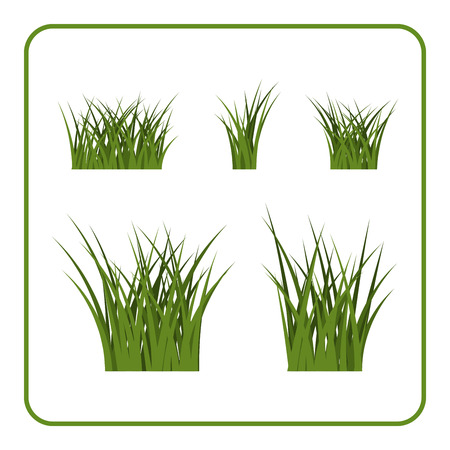 green environment: Green grass bushes set. Nature plant background. Collection silhouettes isolated on white. Symbol of field, lawn, spring and meadow, fresh, summer. Elements for design environment. Vector illustration