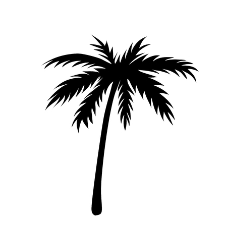One palm tree outline. Black coconut tree silhouette isolated on white background. Symbol of tropical nature, beach, summer holiday, travel. Floral exotic landscape. Natural design Vector illustration