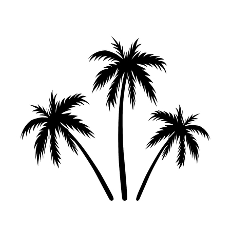 Three Palms Sketch Black Coconut Tree Silhouette Isolated On
