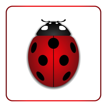 Ladybug small icon. Red lady bug sign, isolated on white background. 3d volume design. Cute colorful ladybird. Insect cartoon beetle. Symbol of nature, spring or summer. Vector illustartion