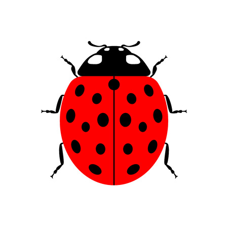 Ladybug small icon. Red lady bug sign, isolated on white background. Wildlife animal design. Cute colorful ladybird. Insect cartoon beetle. Symbol of nature, spring, summer. Vector illustartion Illustration