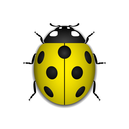 Ladybug small icon. Yellow lady bug sign, isolated on white background. 3d volume design. Cute colorful ladybird. Insect cartoon beetle. Symbol of nature, spring or summer. Vector illustartion Illustration