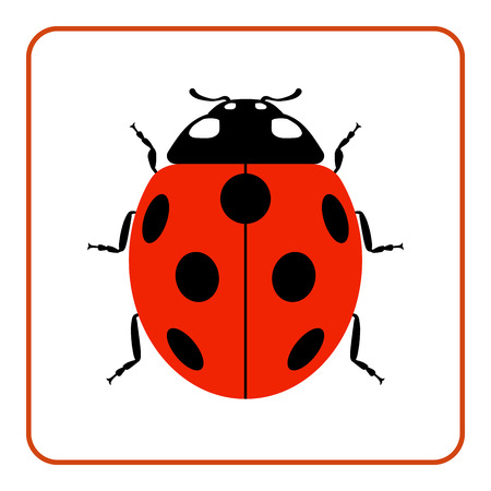 lady bug: Ladybug small icon. Red lady bug sign, isolated on white background. Wildlife animal design. Cute colorful ladybird. Insect cartoon beetle. Symbol of nature, spring, summer. Vector illustration