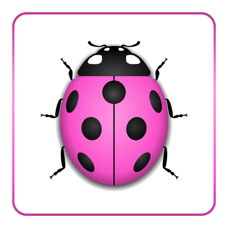 lady bug: Ladybug small icon. Pink lady bug sign, isolated on white background. 3d volume design. Cute colorful ladybird. Insect cartoon beetle. Symbol of nature, spring or summer. Vector illustration