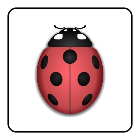 lady beetle: Ladybug small icon. Red lady bug sign, isolated on white background. 3d volume design. Cute colorful ladybird. Insect cartoon beetle. Symbol of nature, spring or summer. Vector illustration